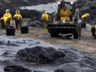 Préjudice écologique: le régime de responsabilité élargi en commission au Sénat