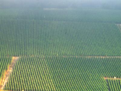 Nitrates: les programmes d'actions régionaux en consultation