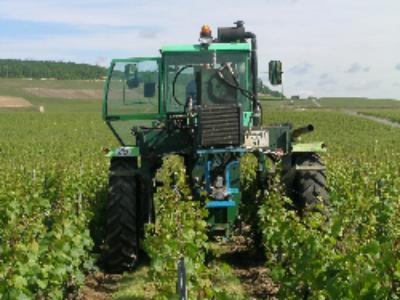 Le projet de loi d'Avenir pour l'agriculture présenté en Conseil des ministres