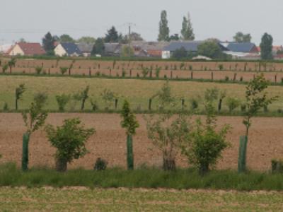 Le projet de loi d'avenir pour l'agriculture voté par l'Assemblée en première lecture