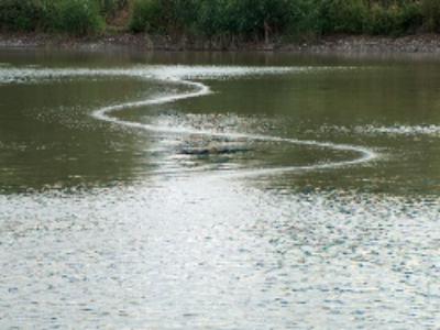 Une vaste consultation sur l'eau, les risques d'inondation et le milieu marin est ouverte