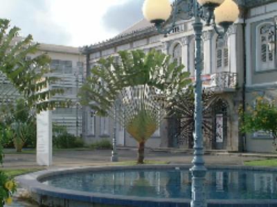 L'impact du Service civique en Martinique