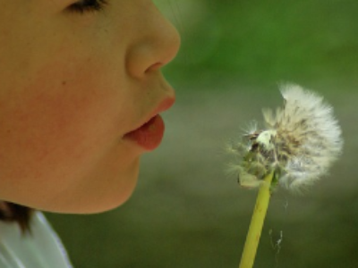 Lancement de la troisième génération de plans régionaux santé environnement