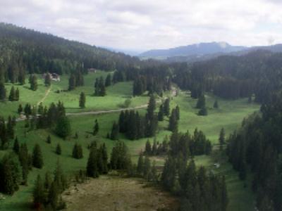 COP21: le Haut-Jura ausculte sa forêt