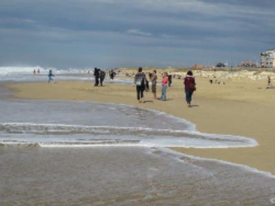 COP21: l'Aquitaine adapte son littoral