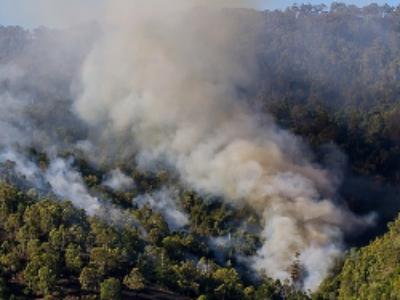 Incendies de forêts: un cadre légal à l'intervention des départements