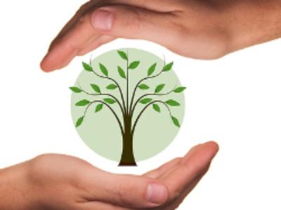Stratégie bas-carbone: les projets publics mis à contribution