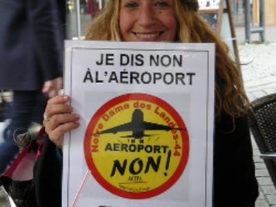 Aéroport de Notre-Dame-des-Landes: l'ordonnance sur la consultation locale entre en piste