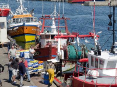 L'Assemblée nationale adopte la proposition de loi pour l'économie bleue