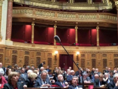 Le Sénat adopte le projet de loi relatif à la liberté de création, à l'architecture et au patrimoine