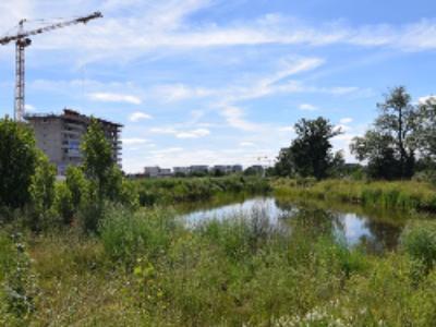 Rennes élue nouvelle Capitale française de la Biodiversité