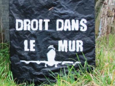 Notre-Dame-des-Landes: l'analyse juridique de la décision de la cour administrative d'appel de Nantes