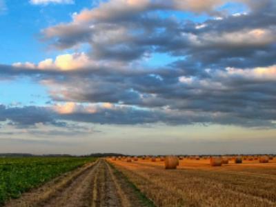 Accaparement des terres agricoles: un accord entre le Sénat et l'Assemblée nationale