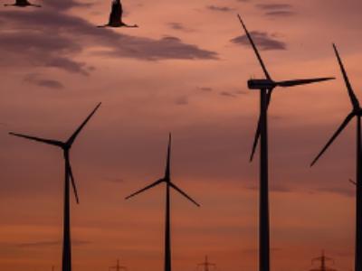 Éolien, solaire, biogaz: trois aides validées par l'Europe