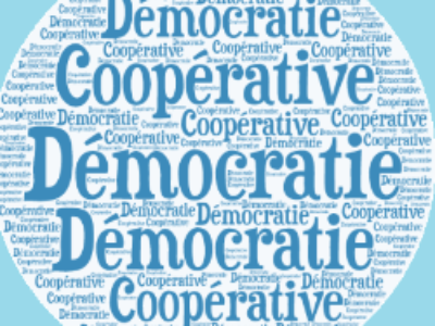 """Les 10 propositions du Sénat pour une démocratie """"coopérative"""""""