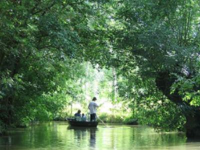 Espaces naturels sensibles et parcs naturels régionaux: un bilan en demi-teint