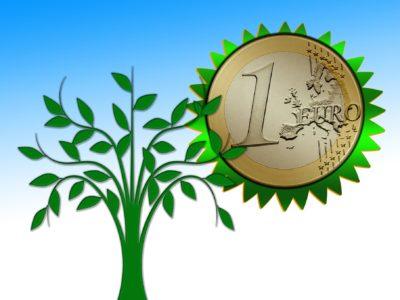 Ecologie: l'Assemblée adopte le budget 2019