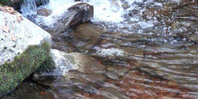 Gestion de l'eau: le gouvernement ouvre les vannes aux projets de territoire
