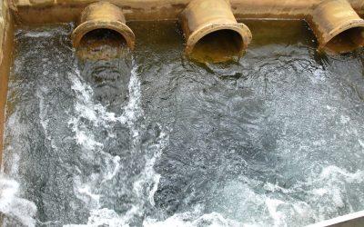 Économies d'eau: les bonnes pratiques ont leur réseau