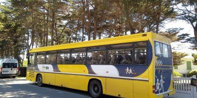 Déconfinement scolaire: le transport d'élèves repart sur les chapeaux de roues
